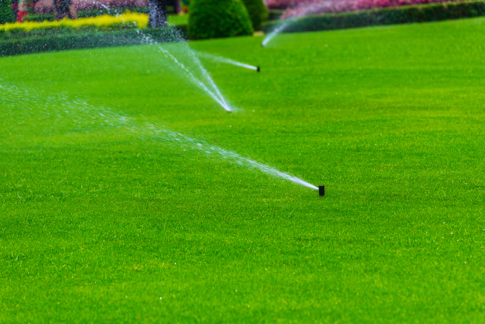 The Importance Of Having An Irrigation System